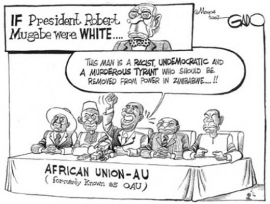 Cartoon Et si Mugabe avait été blanc ?
